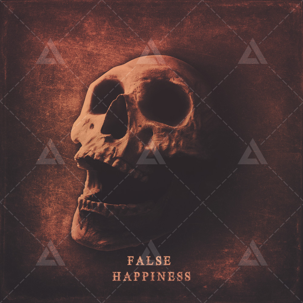False-Happiness Skull Album cover art for sale designer